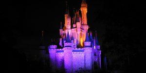 Disney_World_Castle_at_Night_2
