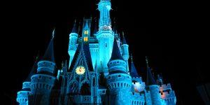 Disney_World_Castle_at_Night_3