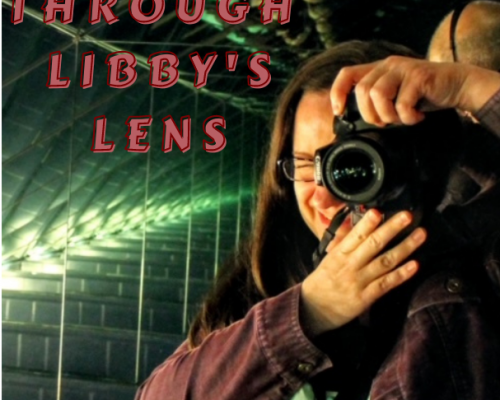 Through Libby's Lens Cover photo