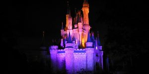 Disney_World_Castle_at_Night_2