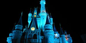 Disney_World_Castle_at_Night_3