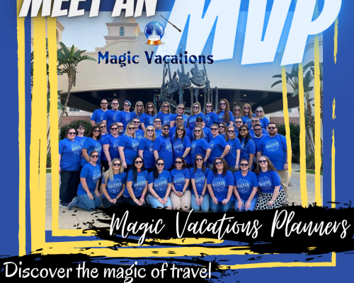 Meet an MVP cover image featuring MVPs